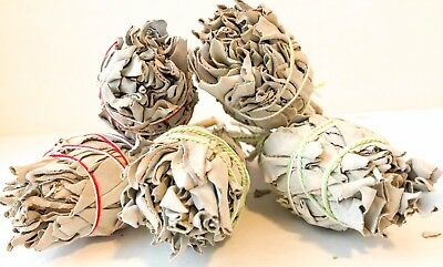 Lot 5 California White Sage Smudge Stick Bundles 4' Wands Cleansing Smudging
