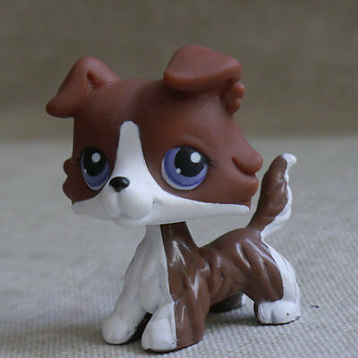 "LPS COLLECTION Action Figure Deep Brown Collie dog TOY 2"" LITTLEST PET SHOP"