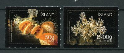 Iceland 2017 MNH Seabed Ecosystem II Clams Corals 2v S/A Set Marine Stamps