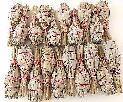 Lot 20 White Sage Smudge Sticks Bundles 4' Cleansing Smudging Blessing Bulk