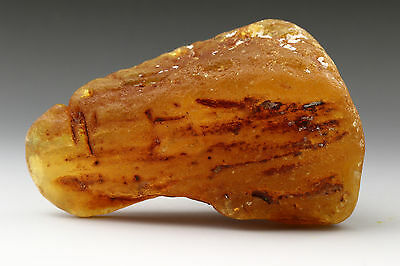 Honey Butter Natural Raw Genuine BALTIC AMBER Sea Stone 51.6g s160303-5