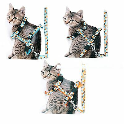 Fish Patterned Adjustable Cat Harness and lead leash Walking Lead