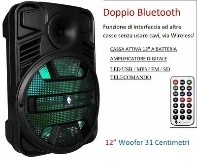 Cassa Amplificata Portatile A Batteria Ricaricabile Usb Bluetooth Radio Fm Mp3