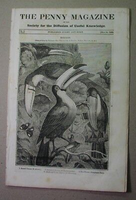 1833 illust. paper: the TOUCAN; Italian SHEEPDOG; Durham Cathedral; blind beggar