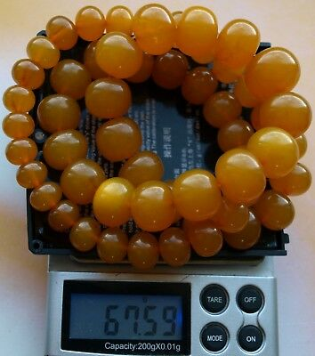 67.59 gm Butterscotch Egg Yolk Color Pressed Baltic Amber Necklace