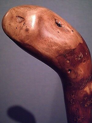 shillelagh cane stick WITH A BRASS TIP american made for big size hand users new