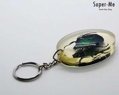 Green Emerald Beetle Taxidermy Insect in Clear Resin Keyring Collection Souvenir