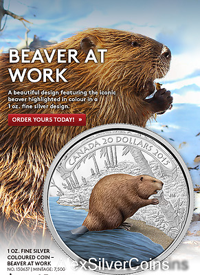 2015 Canada $20 1 oz. 99,99 % Fine Silver Coloured Coin – Beaver at Work
