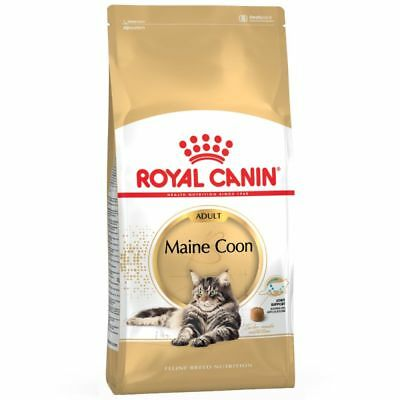 10Kg Royal Canin Maine Coon Adult Complete Cat Food