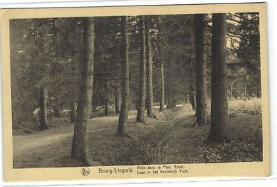 1 old postcard Camp Beverloo laan in koninklijk park