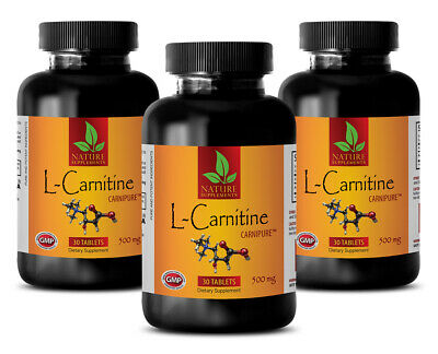 L-Carnitine 500mg w/ Vitamin B6 Muscle Endurance Recovery Energy 3 B 90 Tablets