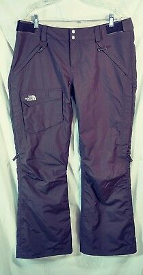 The North Face Hyvent Womens Brown Insulated Snowboard Ski Pants Size L