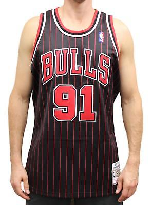 b3e4add84c7 Dennis Rodman Chicago Bulls Mitchell   Ness Authentic 1995 Alternate NBA  Jersey