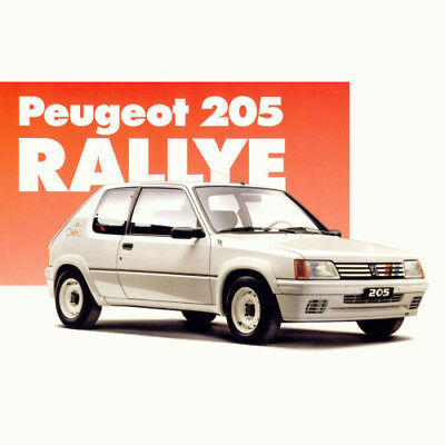 Peugeot 205 Rallye Wide Wheel Arches - Set of 4