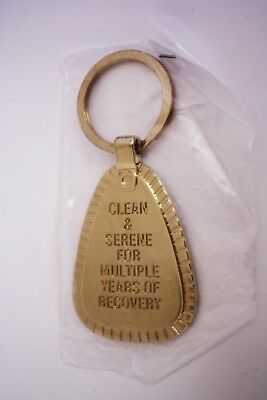 N.a. Metal Key Chain Multiple Years Gold Tone Narcotics Anonymous Na
