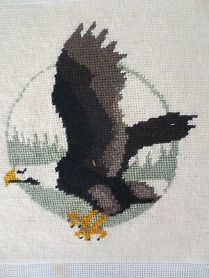 Tapestry Pair Craft Pictures Completed And Framed Eagle Birds  X 2