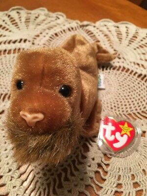 TY Beanie Baby Babies PAUL Walrus NEW Condition Retired