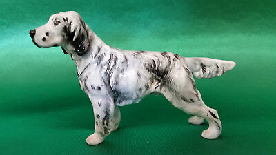 Royal Doulton Cane Porcellana Setter Inglese Ch Maesydd Mustard HN1051 -PERFETTO