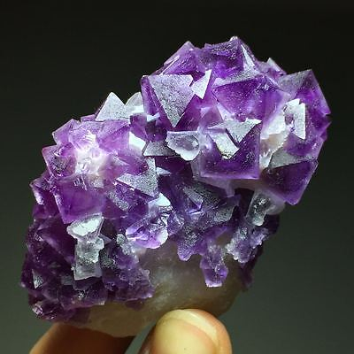 76.7gNice Color Natural Deep Purple Octahedral Fluorite Based on the Matrix,Yiwu