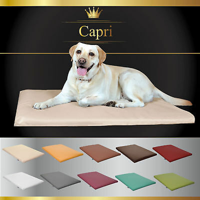Tapis coussin chien simili cuir lit couchage Fortisline 80x60cm matela animal