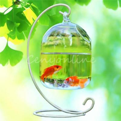 Fish Tank Mini Aquarium Glass Vase Flower Hydroponic Container Pot L 16cm W 10cm