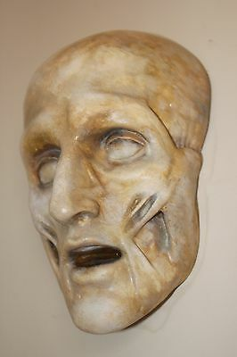 Death Mask Plaque Greek Roman Anatomical Face Skull Medical Muscles Anatomy Rare
