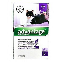 Advantage 80 chat et lapin de plus de 4 kg - 6 pipettes