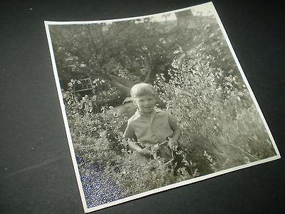 social history 1950's cute boy in the bushes fashion photograph 5'inch