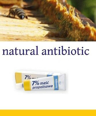 NATURAL Antibacterial Antiseptic Anti Inflammatory Wound cream ointment Dog Pets