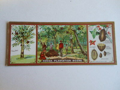 Ideal Cocoa Co. Lititz Pa. Plantation Scene Advertising Trade Card