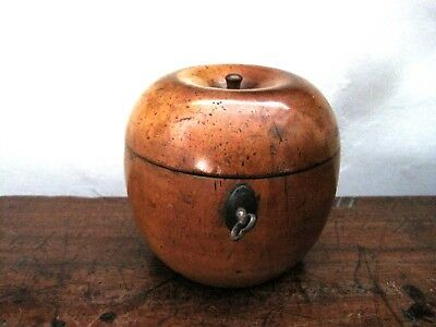RARE GEORGIAN ANTIQUE APPLE TREEN FRUITWOOD tea caddy circa 1800-1830