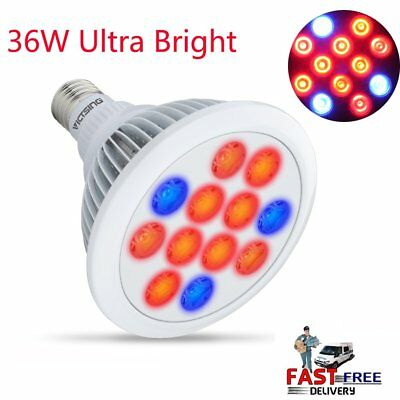 36W 12LED Grow Light E27 Lamp Bulb for Plant Hydroponic Full Spectrum Indoor USA