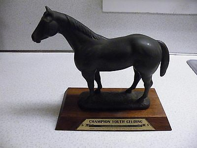 Vintage AQHA Champion Youth Gelding Canton Connecticut 1973