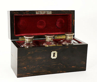 19th c. exotic calamander wood toiletry box holding 3 cut glass bottles [11267]