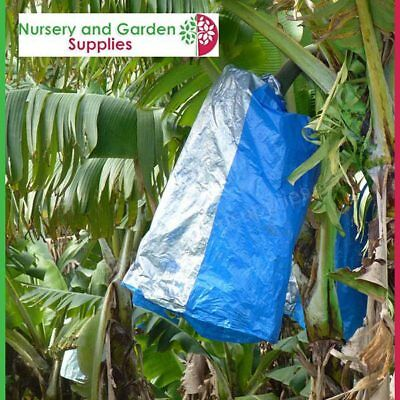 Banana Fruit Bunch Cover Bags BLUE/silver