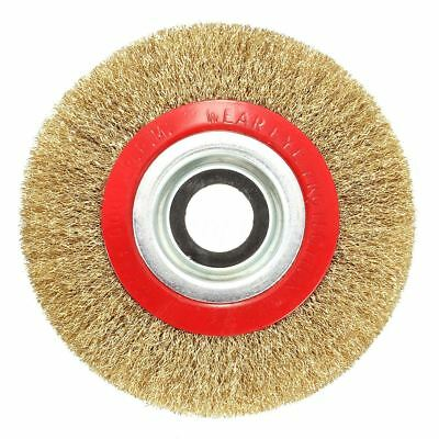 Wire Brush Wheel for Bench Grinder Polish + Reducers Adaptor Rings,6inch 15 F4F5