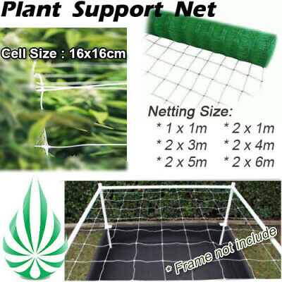 Plant Grow Tent Scrog Grow Net Web 15x15cm Mesh Size Plant Support Net MetalHook
