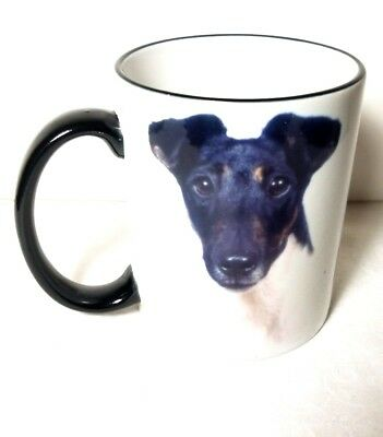 Smooth Fox Terrier Is There Any Breed Pet Dog Ceramic Mug Cup New