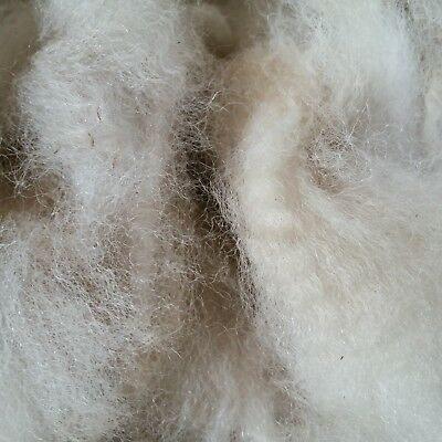 600gm pure Alpaca for spinning or felting. Saddle. White. Skirted well, no seeds