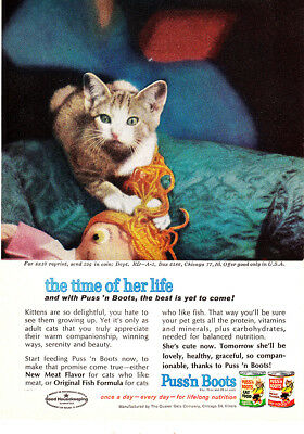 1962 Puss n Boots: The Time of Her Life Vintage Print Ad