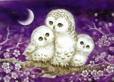 Owl Family- So Cute Tapestry 30X40Cm Canvas To Stitch- Matching Design Available