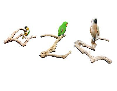 Java Wood Multibranch 4 Sizes - Parrot Toy Branch - FREE P&P