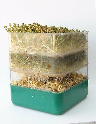 Being Fare 3 tray bean seed sprouter, sprouting, sprouts Brand New!