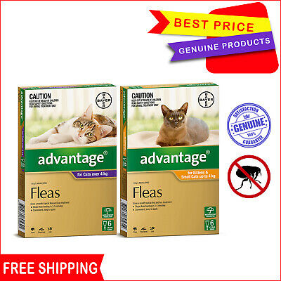 ADVANTAGE for Cats 6 Pipettes + 2 FREE Pipettes Flea Treatment for Cats All Size
