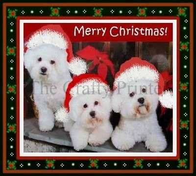 "CHRISTMAS DOG MAGNET - ""Bichon Frise Puppies"""