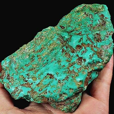 WOW Rarest HUGE 1460CT 100% Natural Royston Nevada Turquoise Rough -Museum Grade