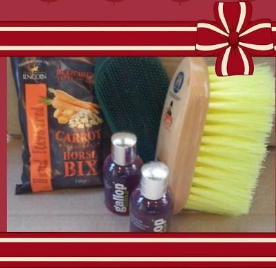 HORSE GROOMING KIT CHRISTMAS GIFT SET treats brushes shampoo
