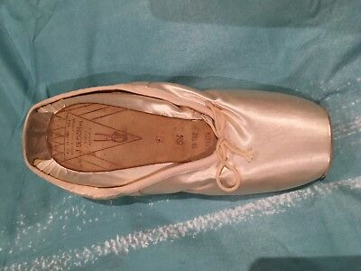 Bloch point ballet shoes