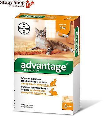 Advantage 40 Chat/Lapin 0-4 kg 4 pipettes antiparasitaires