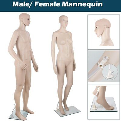 Full Body Female Male Mannequin Cloth Display Tailor Dressmaker Window Showcase